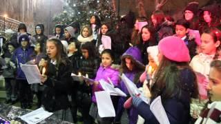 Tree Lighting Ceremony - Saint Demetrios School