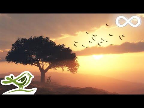 Beautiful Romantic Music
