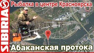 Рыбалка на острове татышева в красноярске
