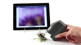 Celestron MicroFi WiFi Handheld Microscope - 44313