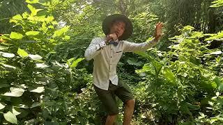 Bất ngờ khi anh hái rau làm náo động cả cộng đồng với giọng hát đặc biệt bởi Góc Hài  Nguyễn Vịnh