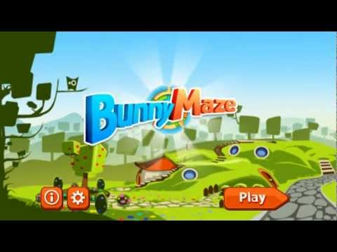 Video of Bunny Maze