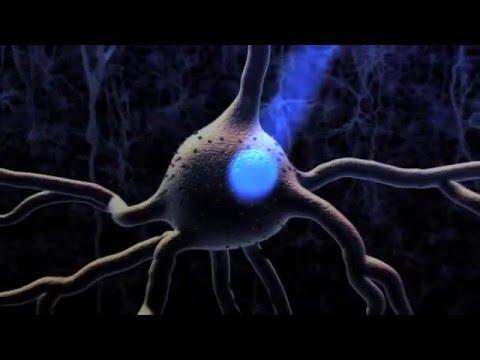 Pour lexercice adénome de la prostate chez les hommes