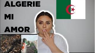 ALGERIE Mi Amor ❤️  L'ALGERINO REACTION  