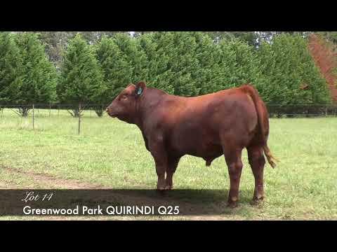 GREENWOOD PARK QUIRINDI Q25 (AI) (ET) GWPQ25