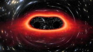 The Largest Black Holes in the Universe