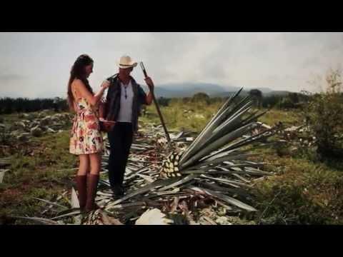 Hijos De Barron - Mi Pequeño Mundo (Video Oficial)
