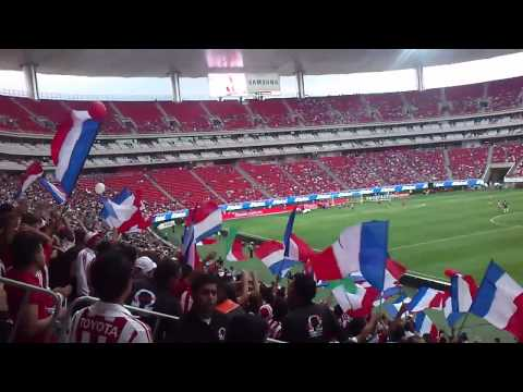 """LA IRREVERENTE chivas vs pachuca"" Barra: La Irreverente • Club: Chivas Guadalajara"