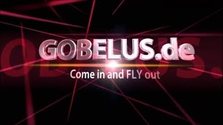 Mjx F649 F49 RC Heli Flug und Crashtest von Gobelus.de