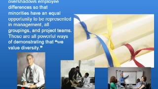 Diversity Awareness in the Workplace Training PowerPoint, DVD, Video Program for Diversity Awareness