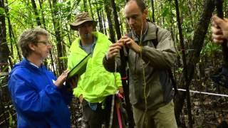 Earthwatch Institute - Daintree's Hidden Coast