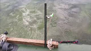Рыбалка на реке чардым саратов