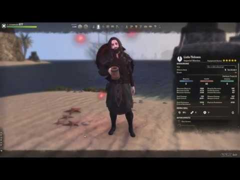 End-Game PvE Warden Main Tank Build by Liofa — Elder Scrolls Online