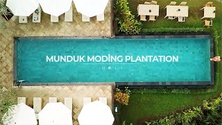 Savor Bali with Munduk Moding Plantation