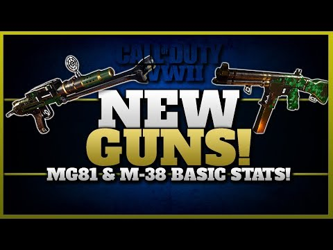 2 New Guns in CoD WW2! | MG 81 & M-38 Basic Stats and Review!
