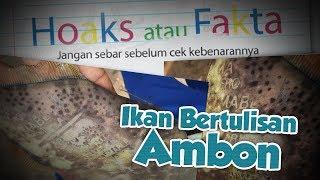 Penjelasan Pakar tentang Ikan Bertulisan Ambon dan Maluku yang hebohkan Warga.