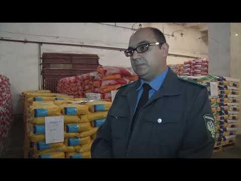 Специалистами Россельхознадзора проведен контроль качества импортных семян в Ростовской области