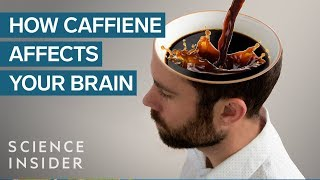 Caffeine - Effect on the Brain
