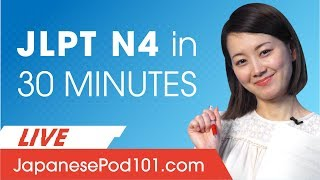 JLPT Level N4: How to Prepare Your Japanese Exam?