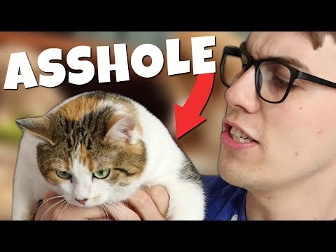 Reacting to ANIMALS BEING A$$HOLES