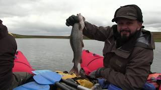 Рыбалка на полярном урале в сентябре