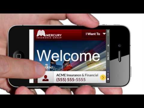 Video of Mercury Portal