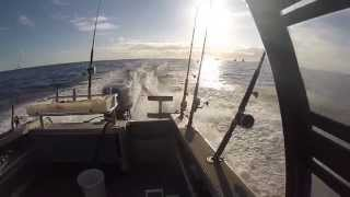 preview picture of video 'Great Barrier Island New Zealand 2014 (GoPro)'