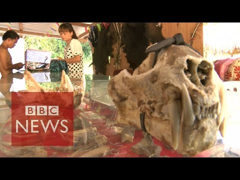 Undercover in Myanmar's Sin city where anything goes - BBC News