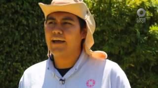 D Todo - Paseando en los jardines de Morelos II