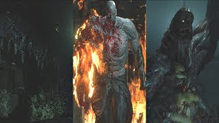 Download Resident Evil 2 Remake - All Boss Fights & Ending