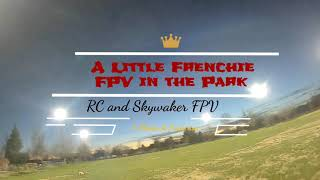 FPV Frenchie in the Park - Don't miss - Anderson River Park - Racing Drone - Insta 360