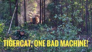 How to run a Feller Buncher-Tree cutter extreme machine