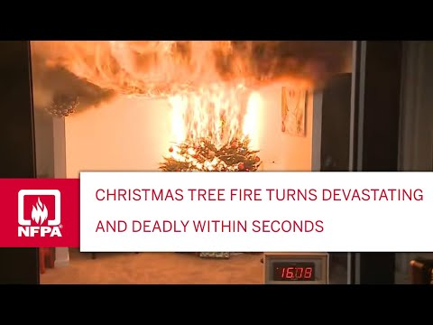 Your Neglected Christmas Tree Is A Huge Fire Hazard