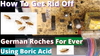 Get Rid Of German Roaches FOR GOOD  - Using Boric Acid - Worst Roach Infestation