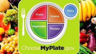 How to Create a Balanced Diet: My Plate!
