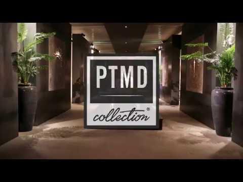PTMD thumbnail