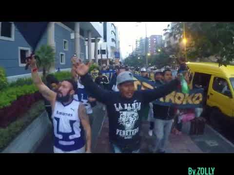 """""""La Banda Del Pebetero (La Rebel) Somos Nosotros La Hinchada"""" Barra: La Rebel • Club: Pumas"""