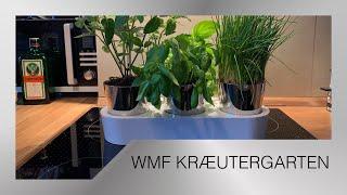 WMF Gourmet Kräutergarten   Glasfaserrdocht [Unboxing] KÆFΞR.review