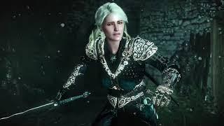 The Mandalorian Witcher
