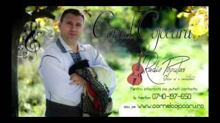 Cornel Cojocaru  - Izvoras curgand la vale