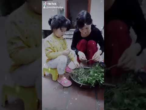 Bé Chu Minh Anh lớp B7 nhặt rau giúp bà