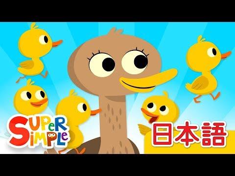 , title : '5わのアヒル「Five Little Ducks」 | こどものうた | Super Simple 日本語