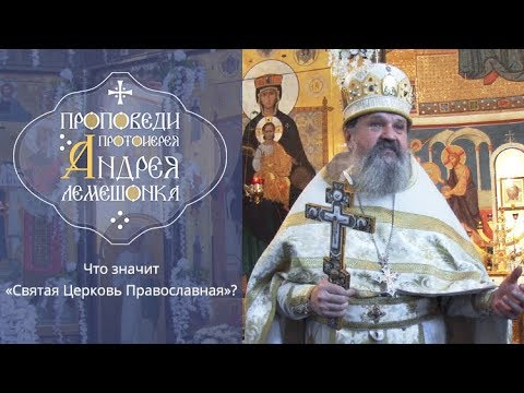 Знаменский п в история русской церкви м 1996