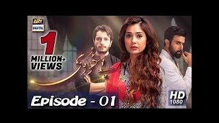 Bay Khudi 1st Episode 17th November 2018 Ary Digital Drama