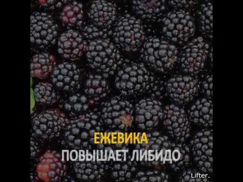 Самые богатые армяне мира 2016