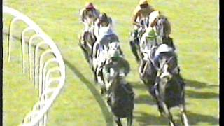 1999 - Ascot - King George VI & Queen Elizabeth Diamond Stakes - Daylami