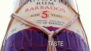 Rum - Rankings Of Best