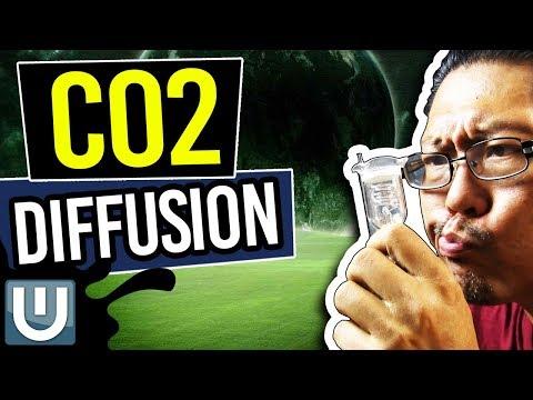 Aquarium Co2 Diffusion – The Ultimate Aquarium Co2 Guide – Part 5