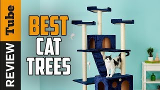 ✅Cat Tree: Best Cat Tree 2019 (Buying Guide)