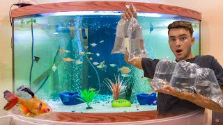 BUYING ALL EXOTIC Fish In The AQUARIUM! **Awesome**